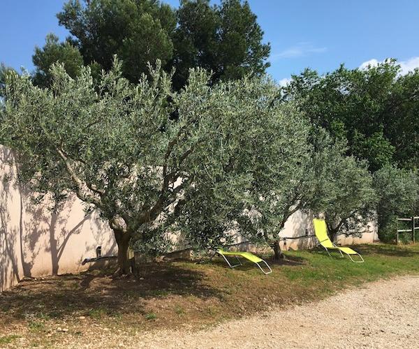 Gîte rural en provence